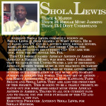 Dad Bio - Shola Lewis - Copy